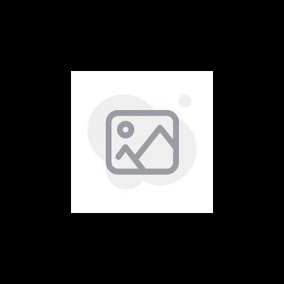 Coque de rétroviseur intérieur - Blanche